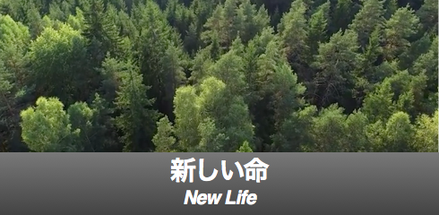 new life-banner