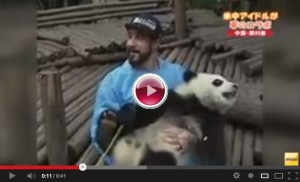 backstreet_boys_with_panda
