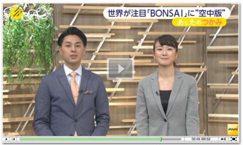 Bonsai-Video